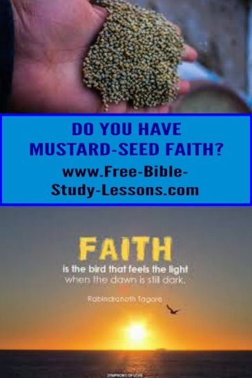 How big is mustard seed faith?  Not very - but it is all you need!