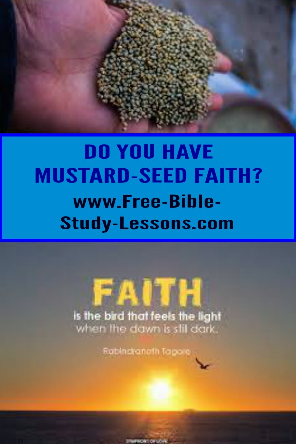 Do you have faith the size of a mustard seed?  If so there is nothing that is impossible to you in God. #faith #christianity #christianlife #believe